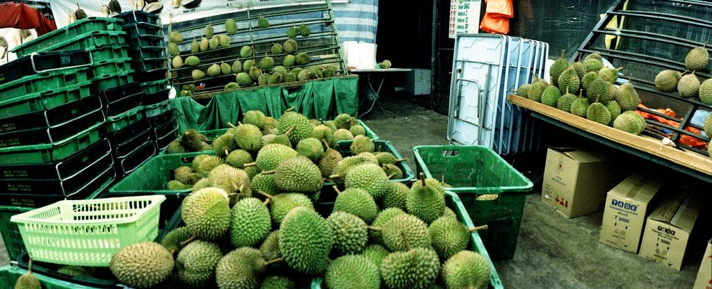 Irresistible Durian: The King of Fruits
