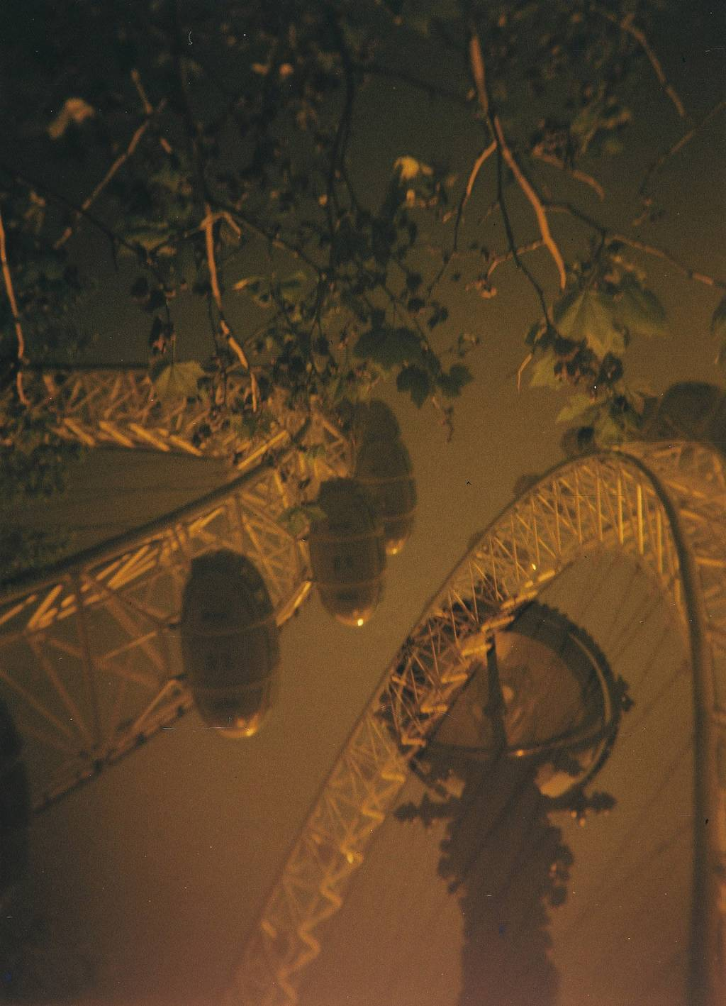 Will There Ever be Enough Light for Lomography Redscale 100?
