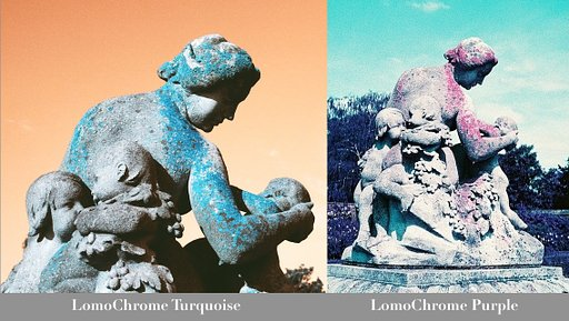 All About the Blues: A LomoChrome Turquoise XR 100-400 Film Review
