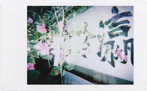 Hands-on Experience with the Lomo'Instant