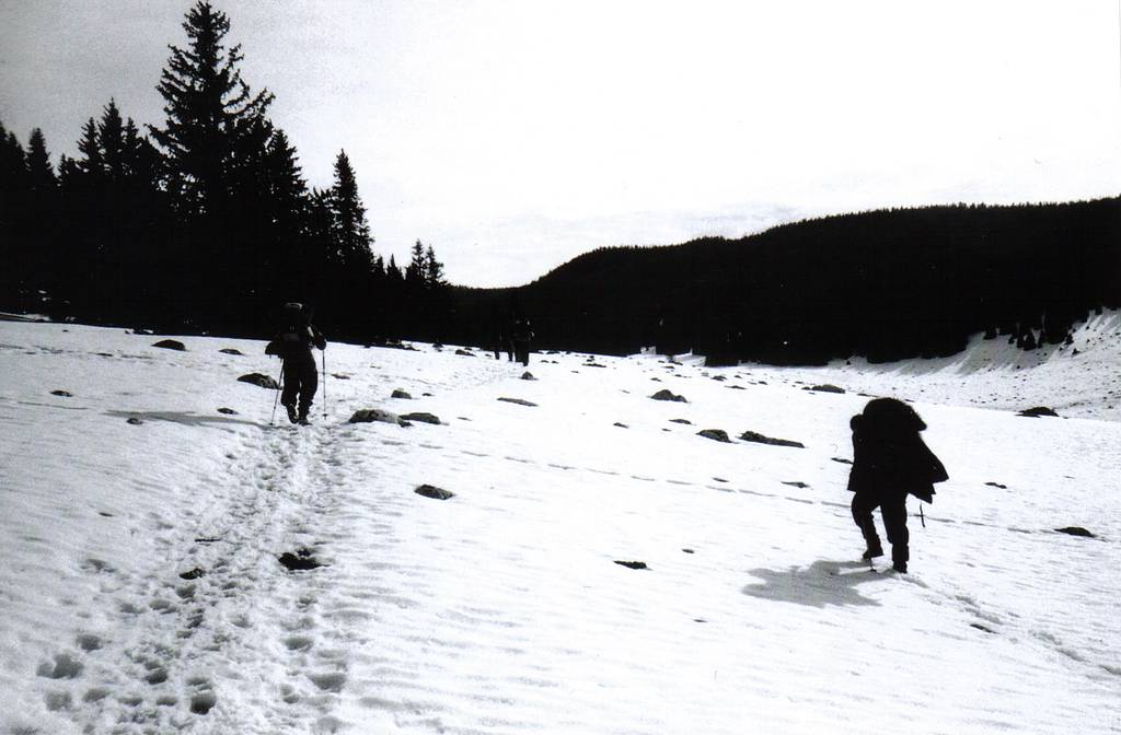 Braving the Winter Cold: Snowhiking in the Vercors